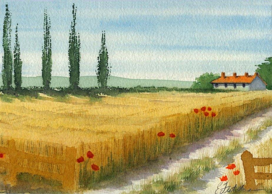 Watercolour cornfield