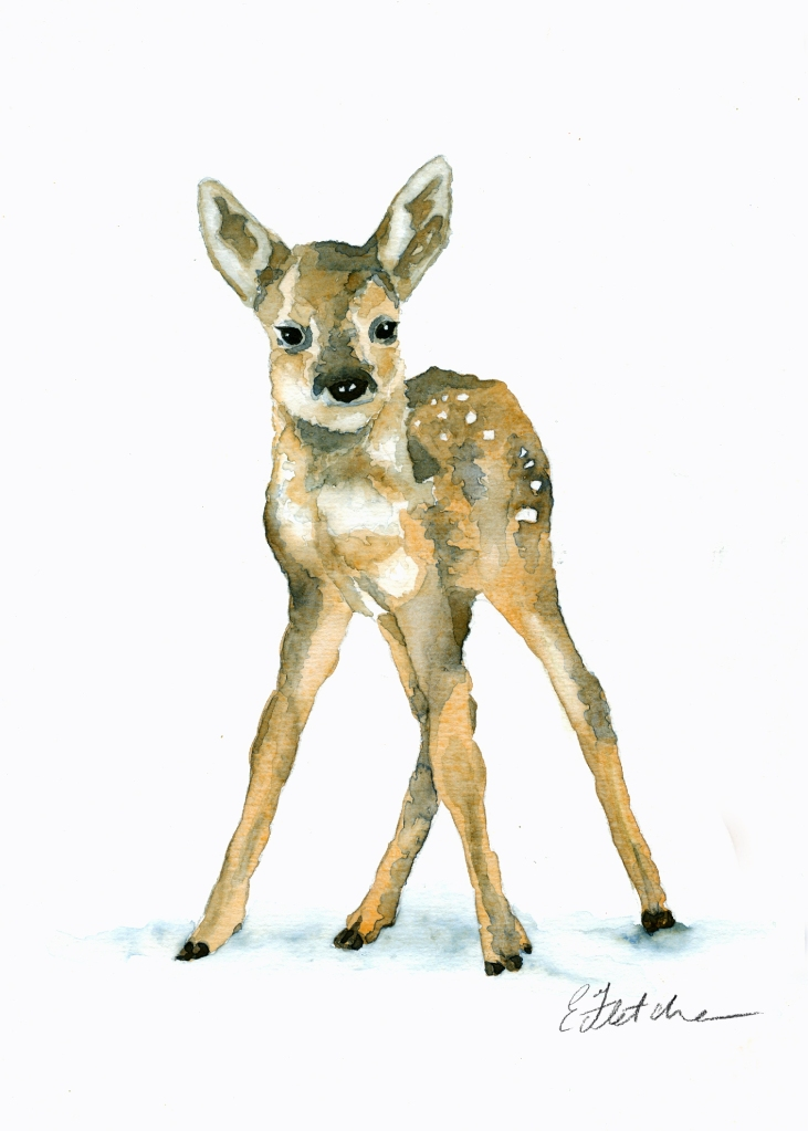 watercolour fawn