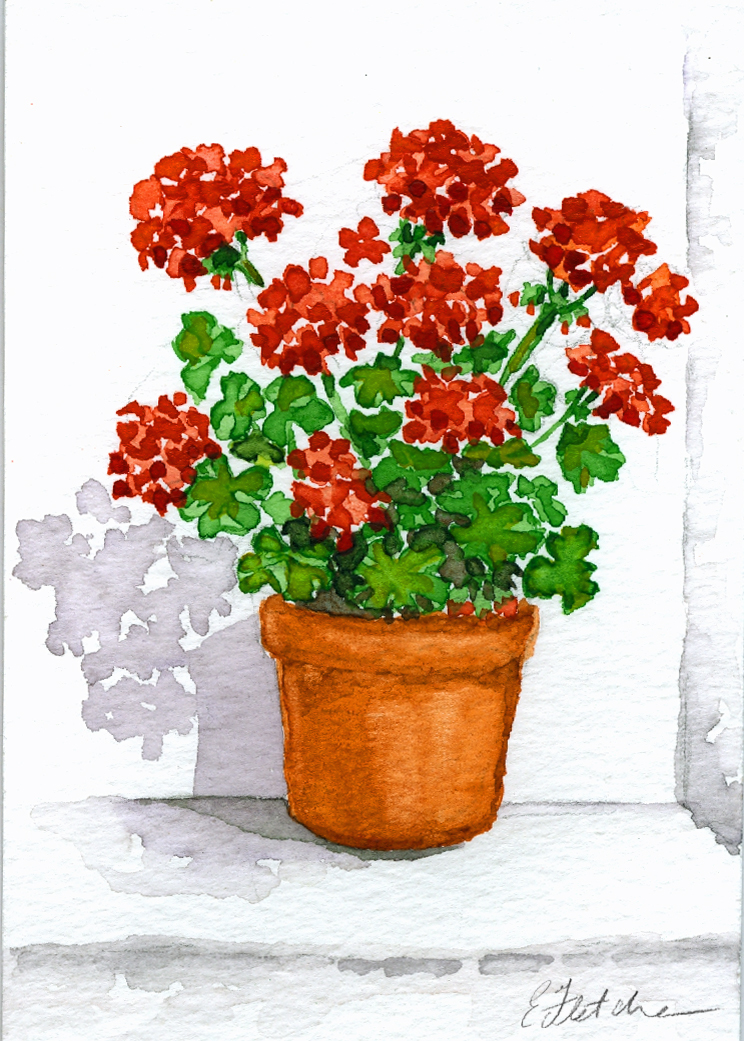 Watercolour geranium pot 9